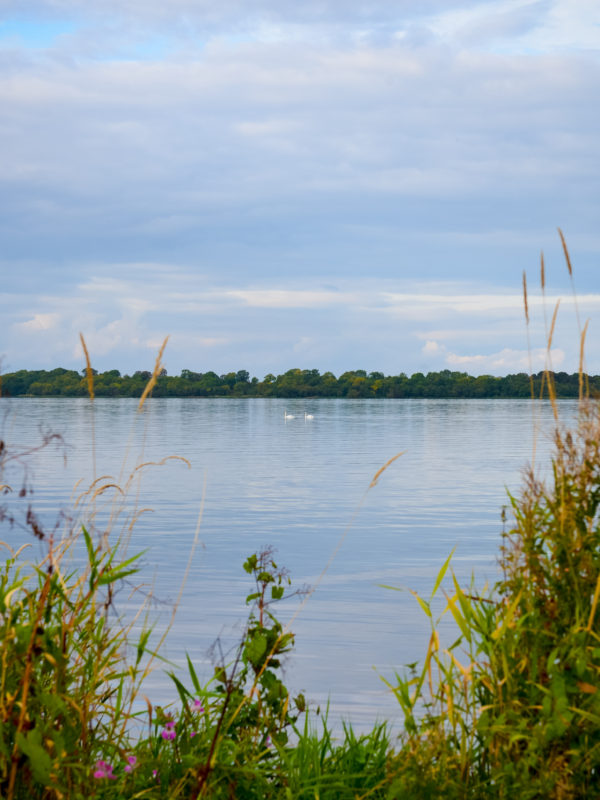 Lough Neagh Connections Symposium