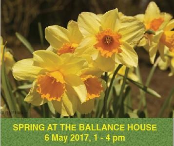 Spring at Ballance House